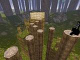 bkz_forestrace